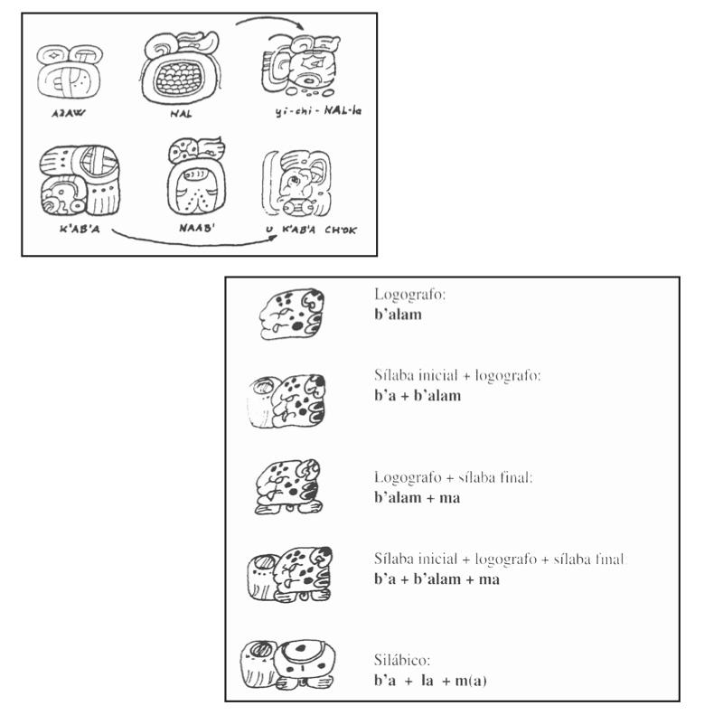 Epigrafía Maya.jpg