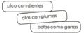 Características de las aves.png