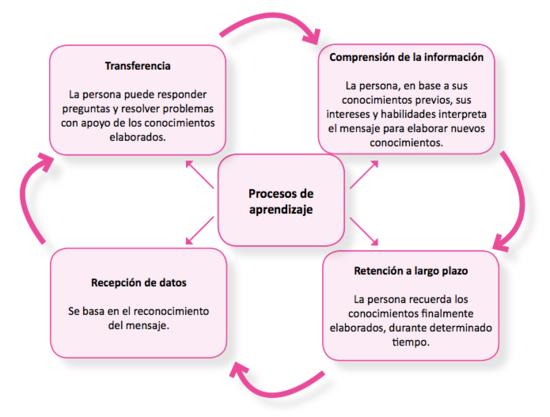 Procesos del aprendizaje.png