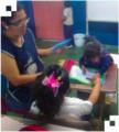 Aprendizaje de lectoescritura en estudiantes con necesidades de educación especial 03.png