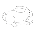 Conejo 01.png