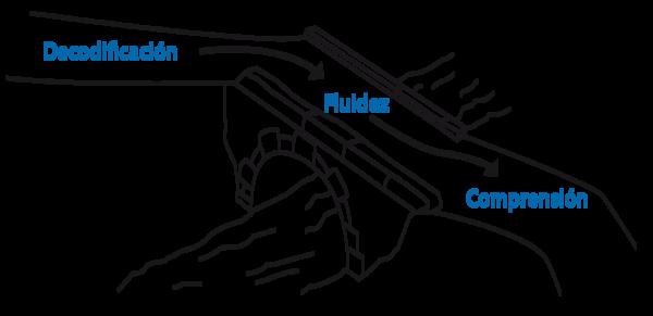 3 Segundo ciclo-15 fig1.png