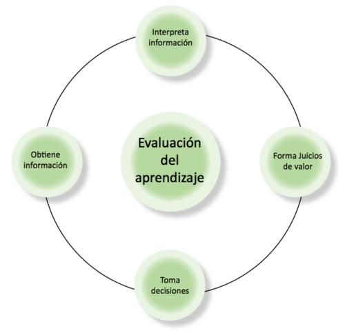 Proceso de evaluación.png