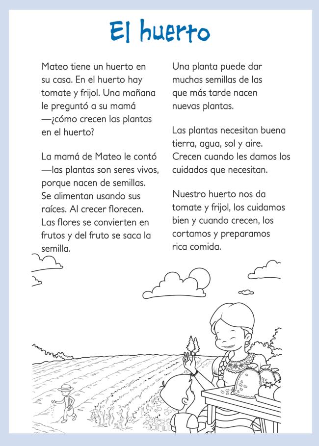 El huerto1.png