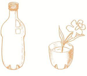 Botella y flor.jpg